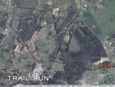 Giant Aloe Trail Run Route