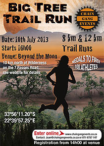 Big Tree Trail Run 2013